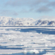 Sea ice, northwestern Spitsbergen.